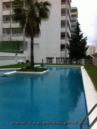 апартаменты в Gandia, квартира в Gandia, квартира в Гандии, квартира в Испании, квартира на Коста Бланка, квартира на пляже, недвижимость в Испании, Коста Бланка, CostablancaVIP