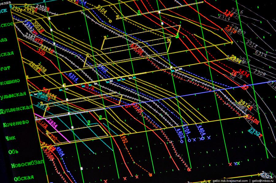 вид пауков фото графика движения поездов днях девушка написала