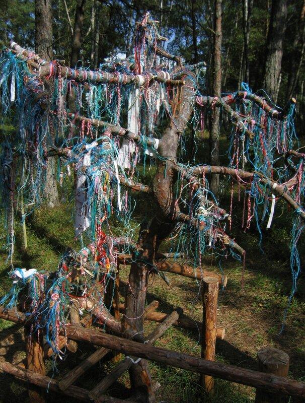 Дерево желаний в музее русских суеверий на Куршской косе