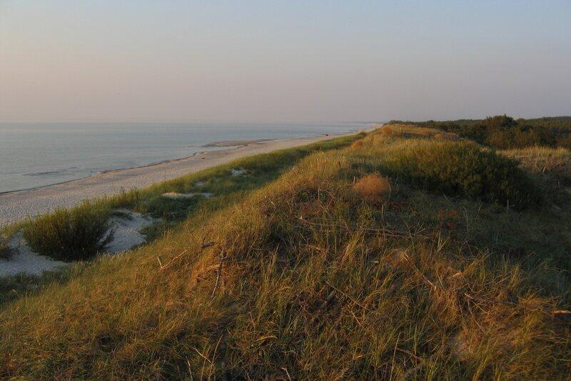 Балтийский берег Куршской косы
