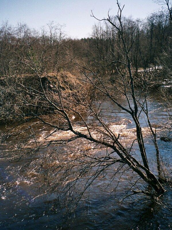Река Серёжа, Тверская область