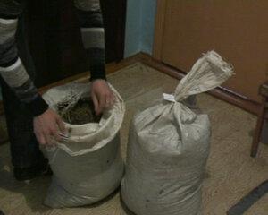 20 мешков марихуаны обнаружено в микроавтобусе на улице Раковой в Уссурийске