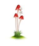 Wonderland Kitsch