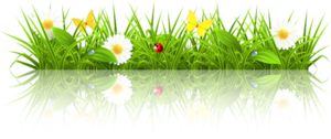 http://img-fotki.yandex.ru/get/6206/94039626.9b/0_7c83c_9e513504_M.png