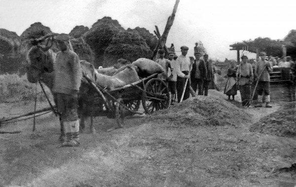 1930, первый урожай в колхозе Оборона, Башкирская АССР.jpg