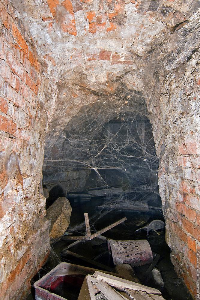 Паутина в подвале