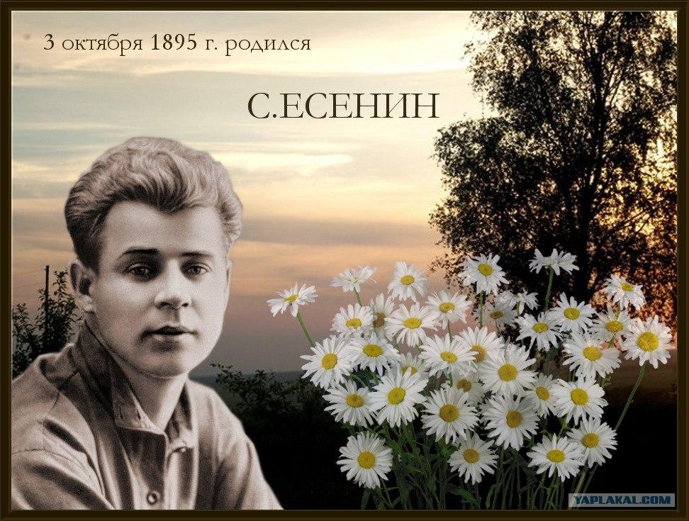 С днем поэзии! 3 октября 1895 г. родился С. Есенин