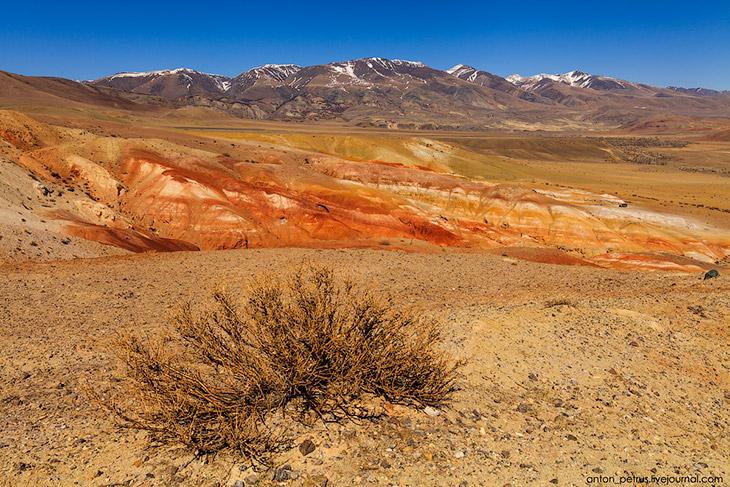 Красная планета (13 фото)