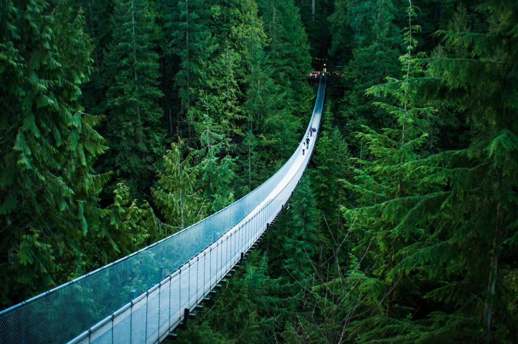 Канада. Подвесной мост Капилано. Сооружение расположено на высоте 70 метров над одноименной реко