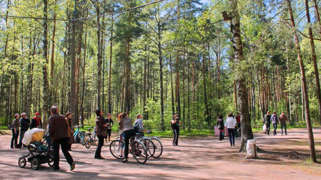Впетербургском парке велосипедист насмерть сбил ребенка