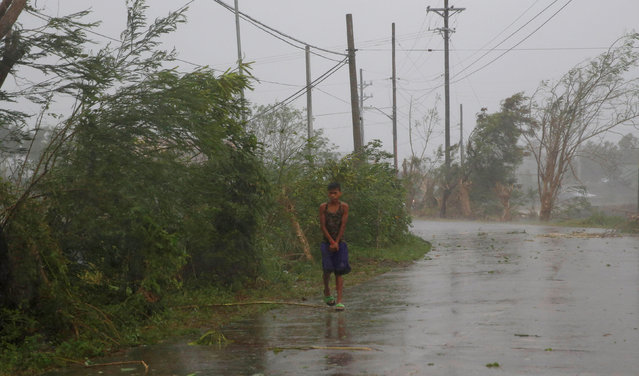 A resident walks on an empty road as Typhoon Haima strikes Laoag city, Ilocos Norte in northern Phil