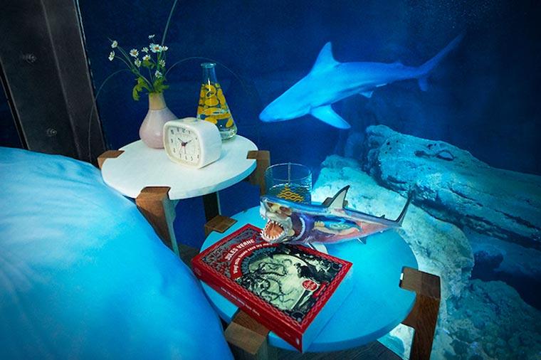 Sleep in an aquarium with sharks 35