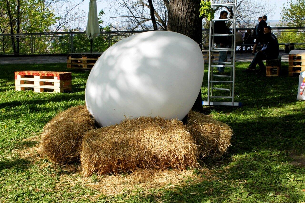 Яйцо под деревом