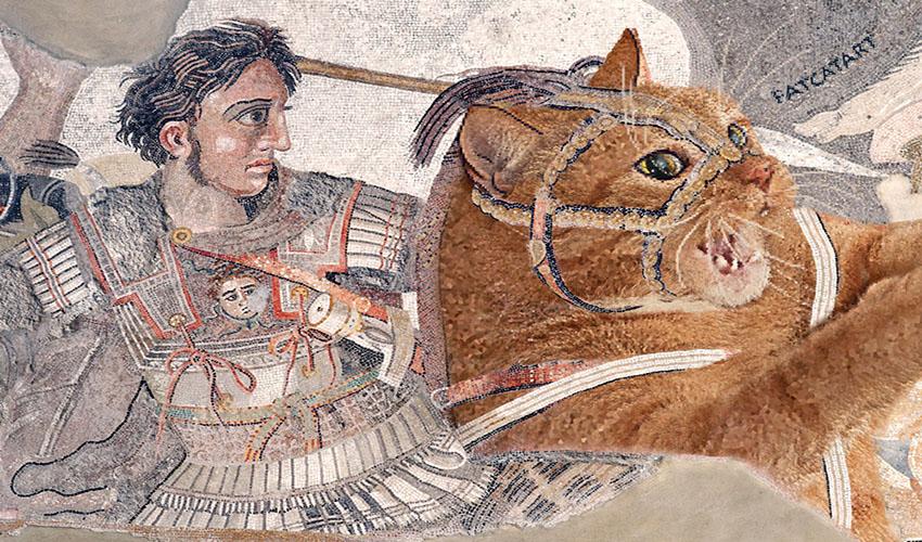 Александр Македонский на Толстом Коте в битве при Иссе. Мозаика, Помпеи