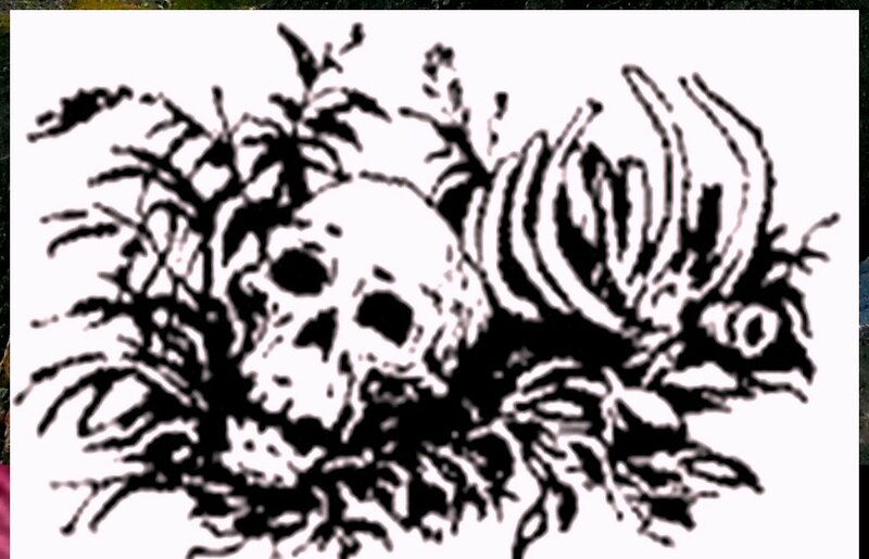 Иллюстрация к книге В.К.Арсеньева Дерсу Узала (15).jpg