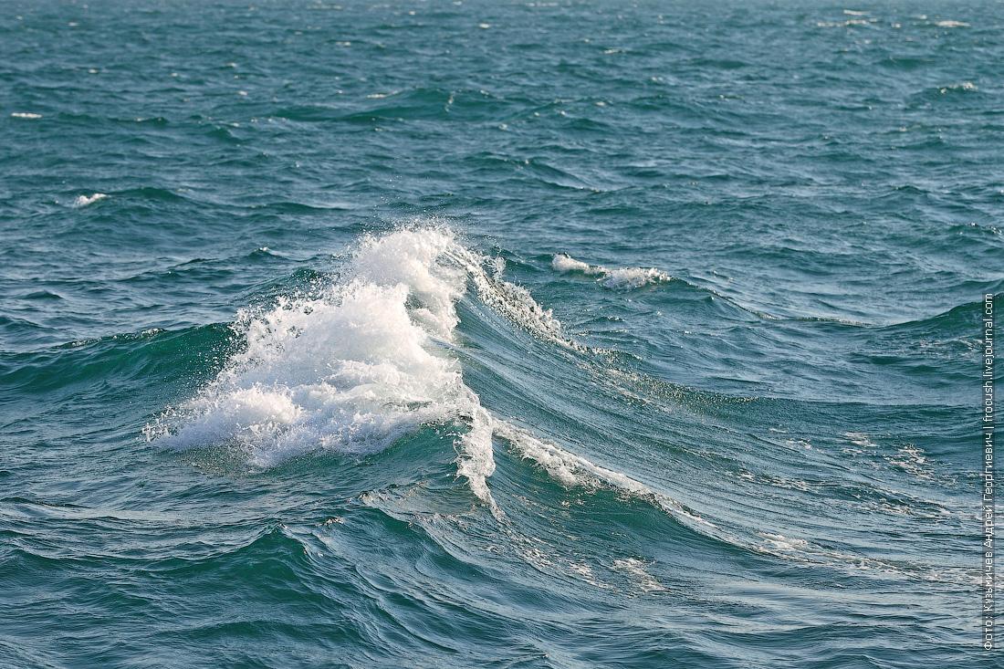 волны Каспийского моря