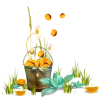 MRD_SwingIntoSpring_Kit_BONUSCLUS7.png