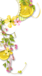 RR_PinkLemonade_Cluster03.png