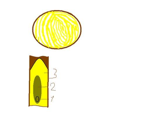 http://img-fotki.yandex.ru/get/6207/132532603.0/0_6939c_f681bdb5_L.jpg