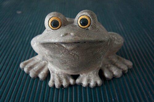 жаба Светочка