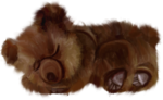 NLD Sleeping Bear.png