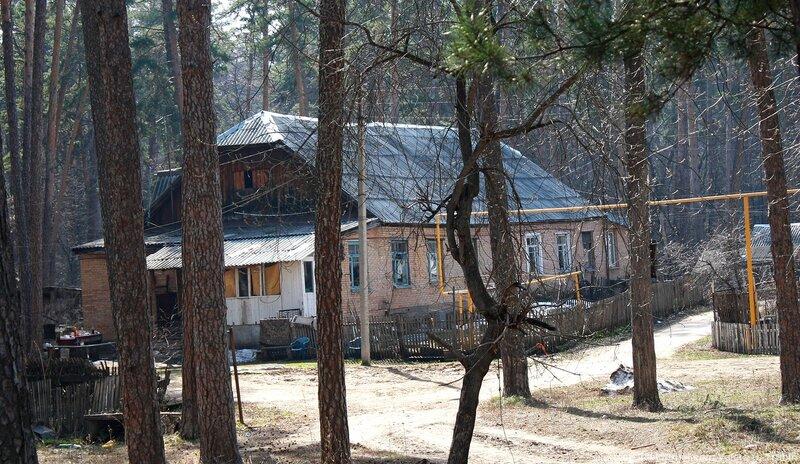 луга высокой тольятти санаторий лесное фото юркин
