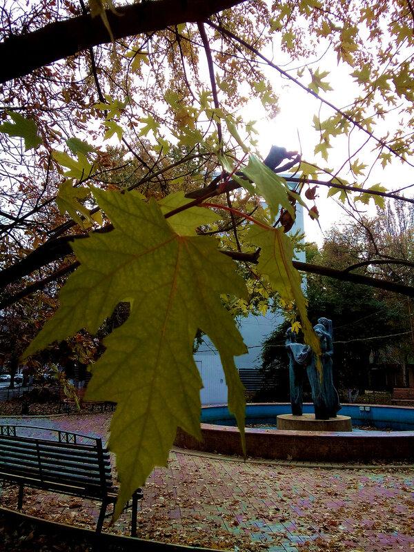 Осень на Трёхбабнике.jpg