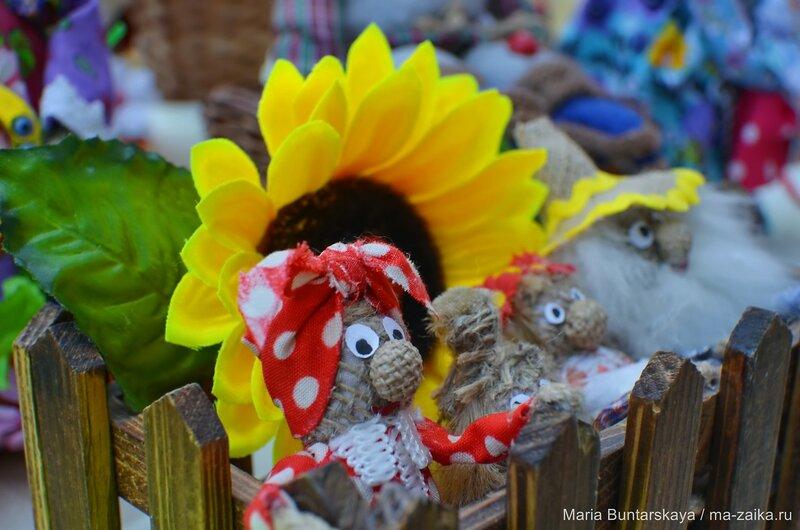 Фестиваль дедушек, Саратов, 15 августа 2015 года