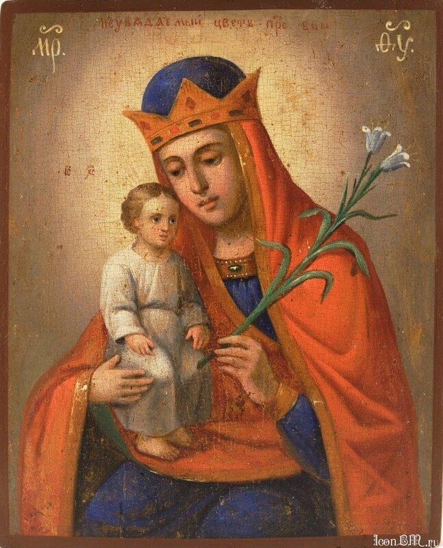 Икона Божией Матери НЕУВЯДАЕМЫЙ ЦВЕТ 1850.  Юг России.