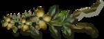 """Шикарный летний скрап-набор..""""Зеленая симфония"""" 0_752bd_1717ec17_S"""