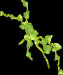 "Шикарный летний скрап-набор..""Зеленая симфония"" 0_752c1_3e8e0b6b_S"