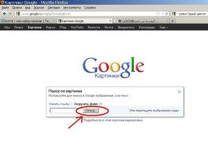 Поиск интернет- дублей картинок с помощью Гугла 0_94678_7b1fda98_M