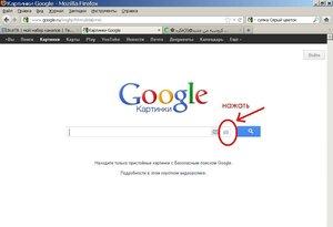 Поиск интернет- дублей картинок с помощью Гугла 0_9467b_187863a_M