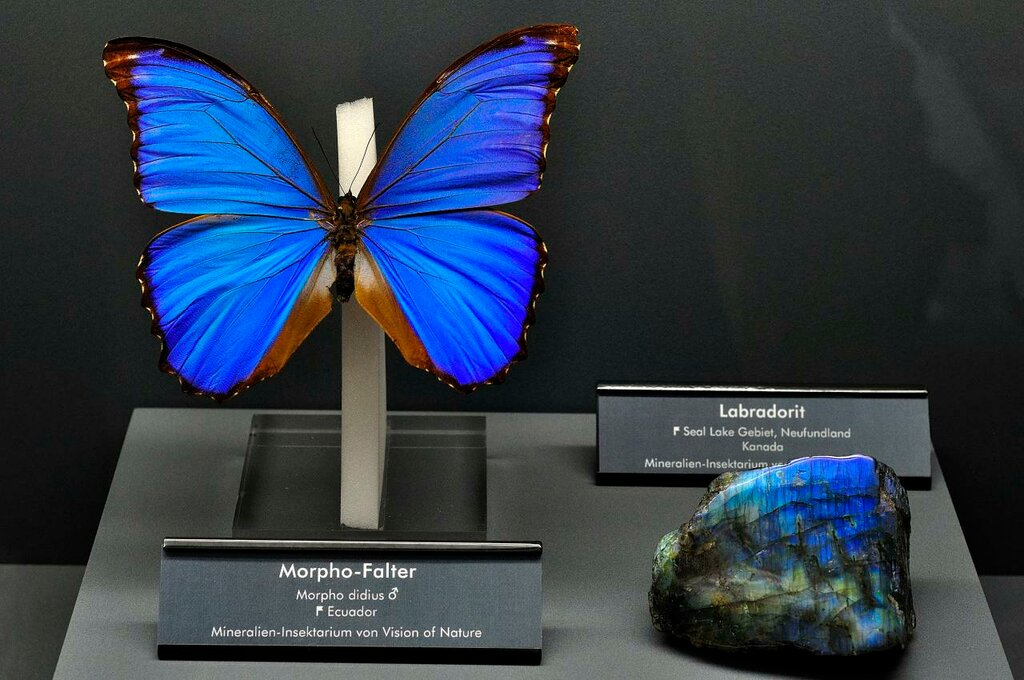 Labradorite and Butterfly.