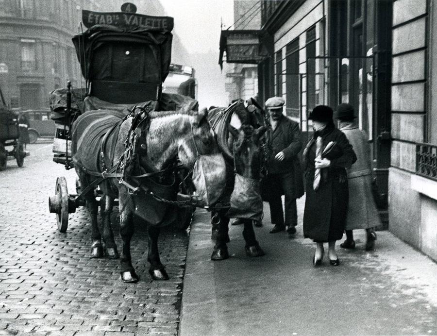 11 Attelage d'un vendeur de charbon 1931  Photo André Kertèsz.jpg