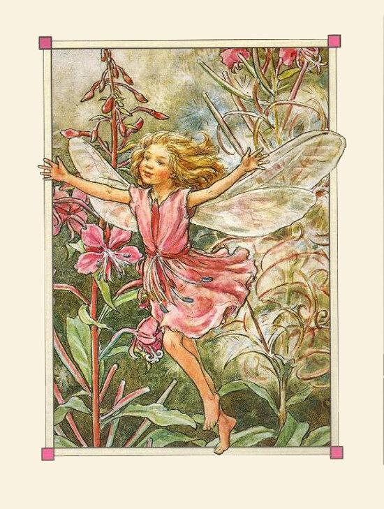 Волшебная страна эльфов и цветов Cicely Mary Barker Суббота, 26 Мая 2012 г. 15:21 (ссылка) Процитировано 1 раз в...
