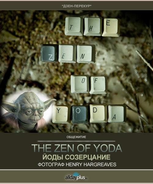 Yoda-zen|Фотограф Henry Hargreaves
