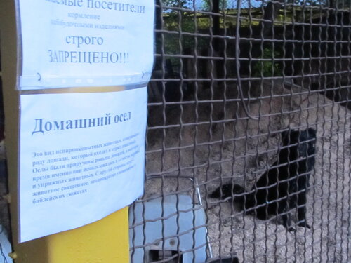 луганский зоопарк