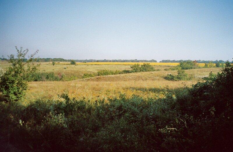 Степь и поля в Белокалитвенском районе Ростовской области