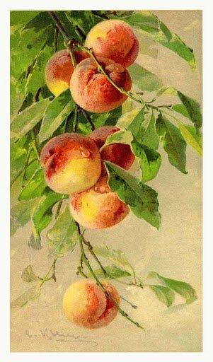Для пожелания здоровья необходимо вышить пару журавлей рядом с сосновой веткой или деревцем или персик. http...