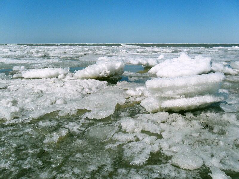 Льды у берега, март