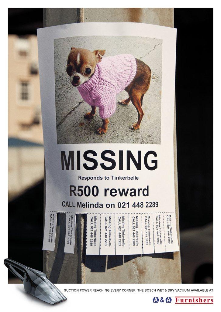 A-A Furnishers - пропала собака