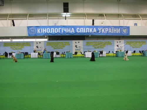 http://img-fotki.yandex.ru/get/6209/108767059.3/0_6f21d_9ff19f21_L.jpg