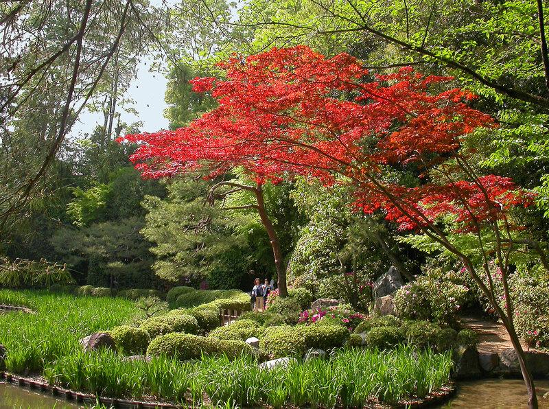 Kрасивые сады(картинки)