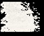 sekadadesigns_likearose_element(38).png