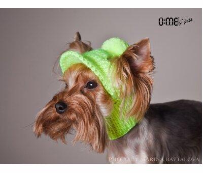 вязаные шапочки для собак
