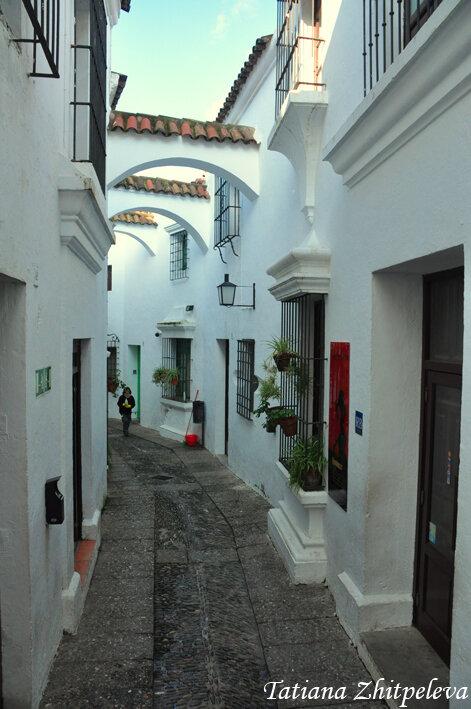 кусочек Андалусии3