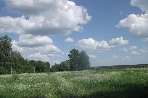 Дорога и улица в Медвежке