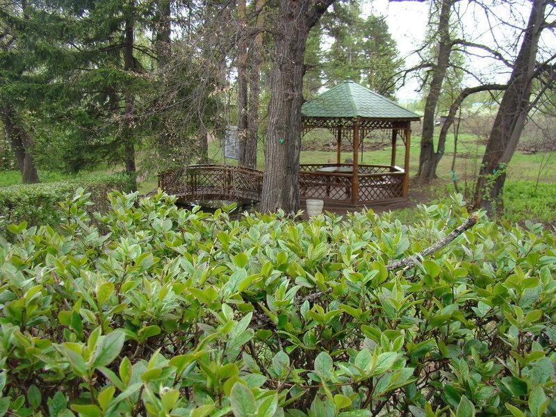 сад крутовского красноярск официальный сайт #3