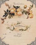 «Rose Wedding»  0_8562d_2e7f4fc1_S